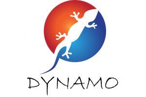 Dynamo profile released!